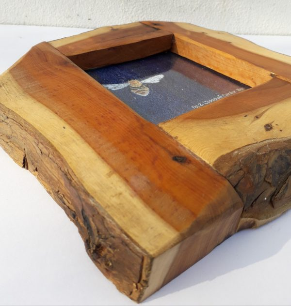 yew picture frames